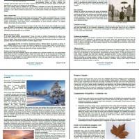 Páginas anuário