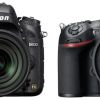Nikon-D600-vs-D800jpg1