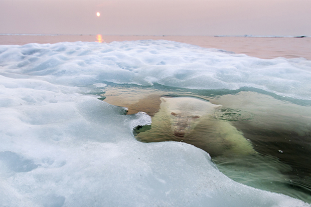 (c) Paul Souders / National Geographic Photo Contest 2013