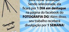 Divulgue-DG_v2