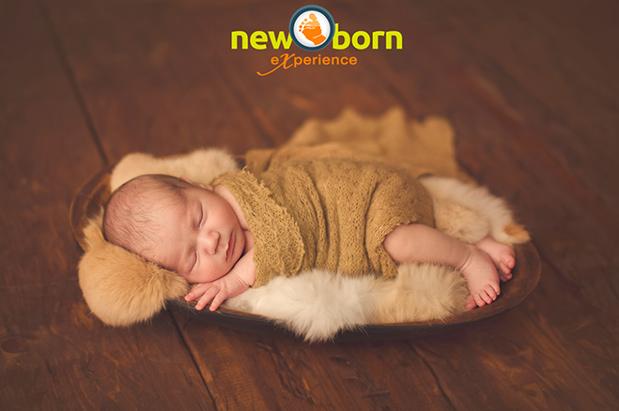Newborn Experience: uma imersão na fotografia de recém-nascidos