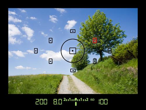 Visão do viewfinder via shutterstock