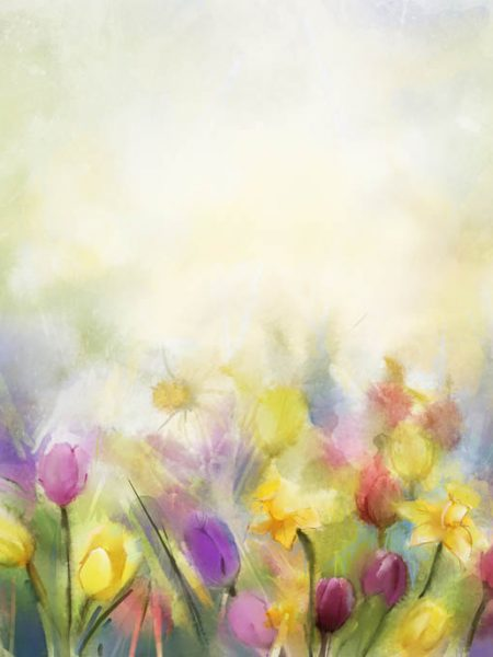 Watercolor flowers painting.Flowers in soft color and blur style for background.Vintage painting flowers